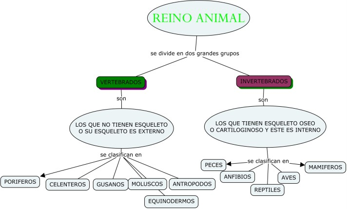 reino-animal-modificado-cmap